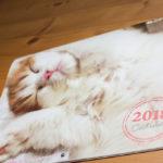 カレンダー表紙_2018