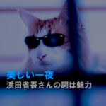 ねこ、浜田省吾、歌詞、美しい一夜