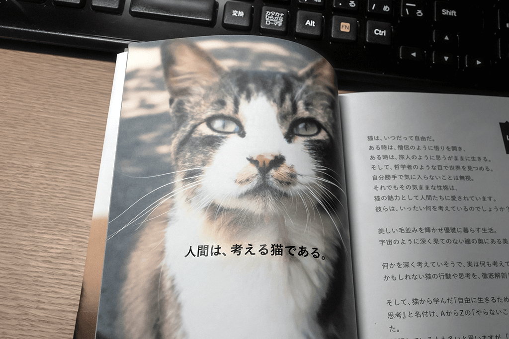 人間は考える猫である