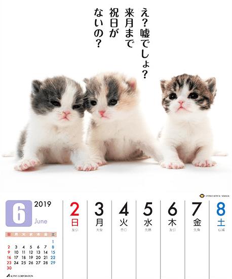 だってネコだものカレンダー_6月ざんねん