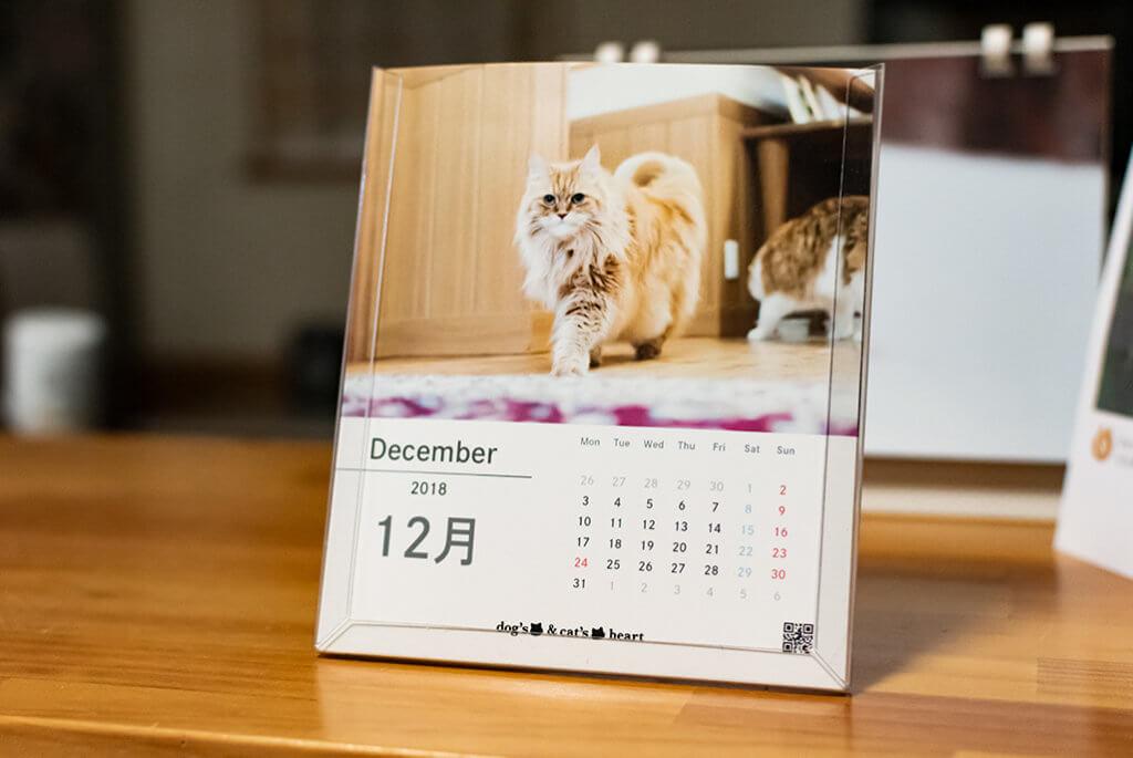 nekosカレンダー1