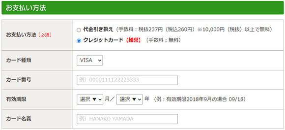 54単品購入キャプチャ54_支払いカード